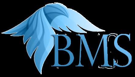 Blockbased Management System